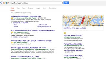 SEO, Search Engine Optimization | NYC, Rockland County